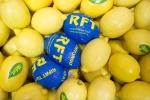 Лимон (Турция)