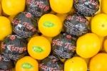 Апельсин (Турция)